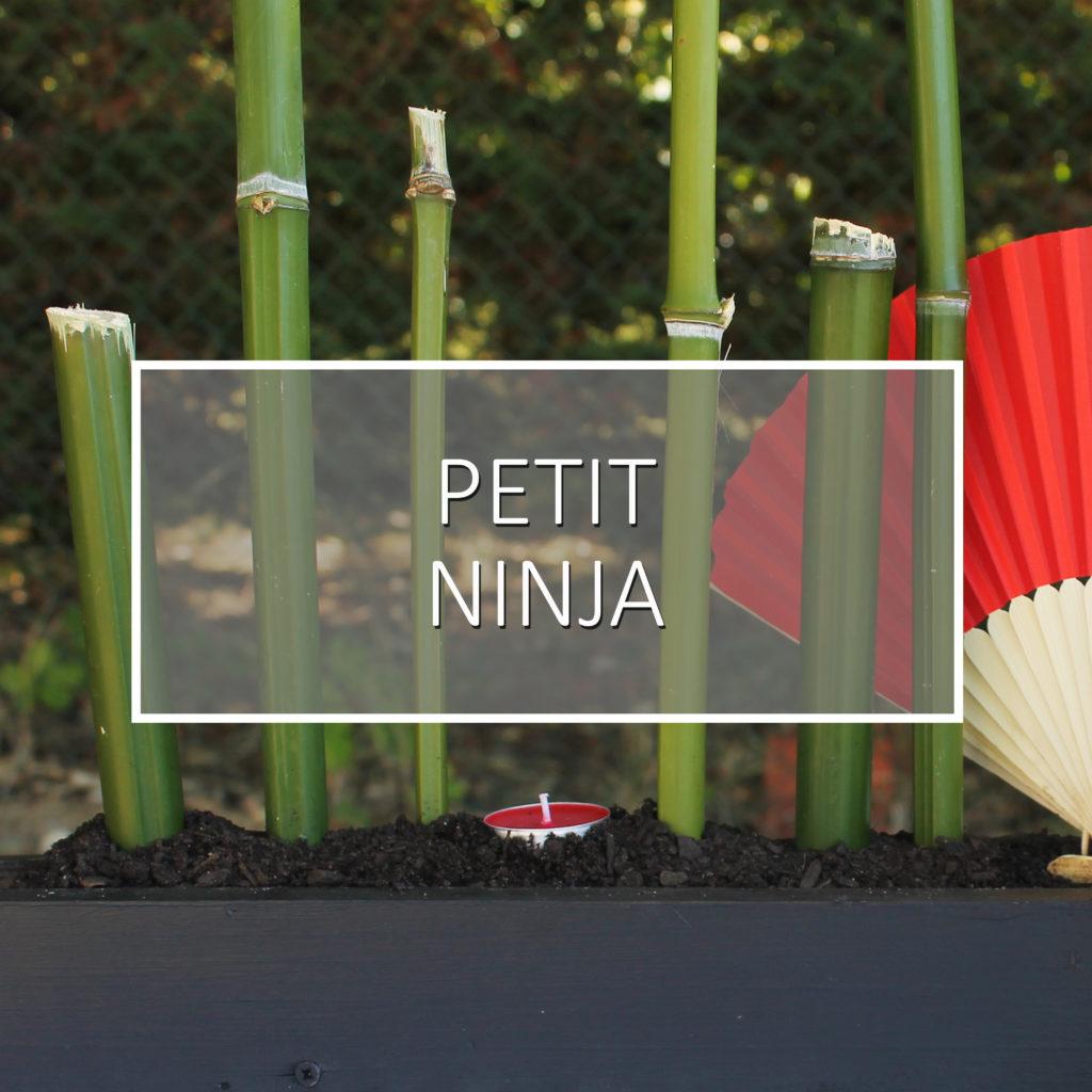 thème petit ninja pour un anniversaire enfant