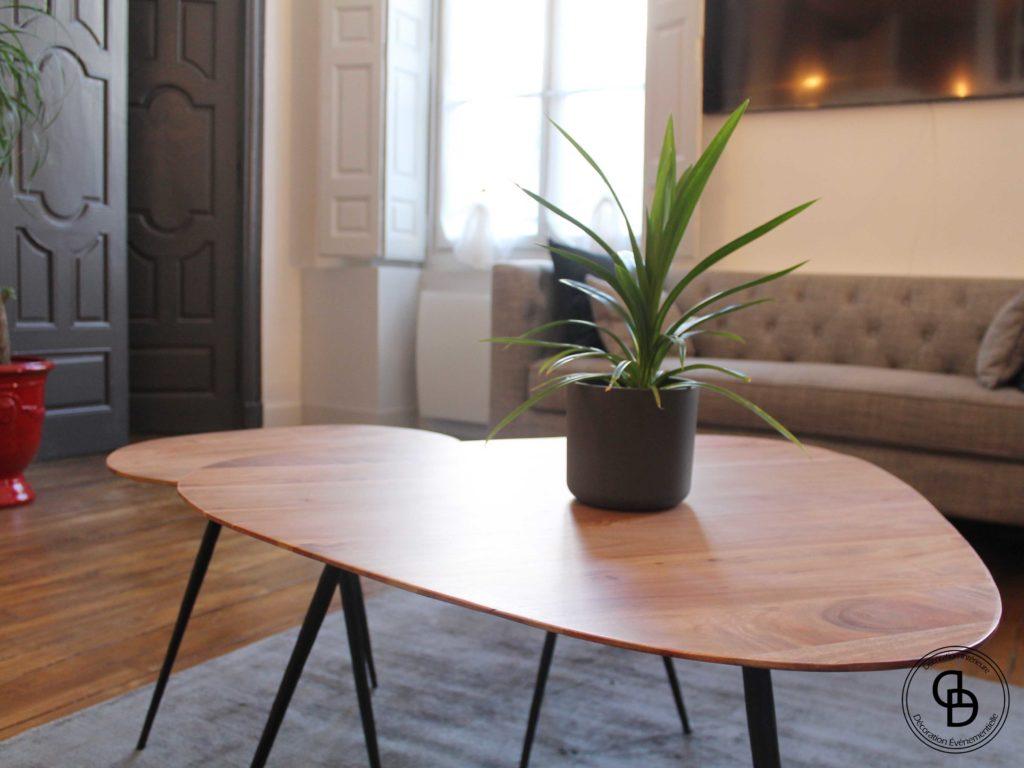 Plante verte sur table basse
