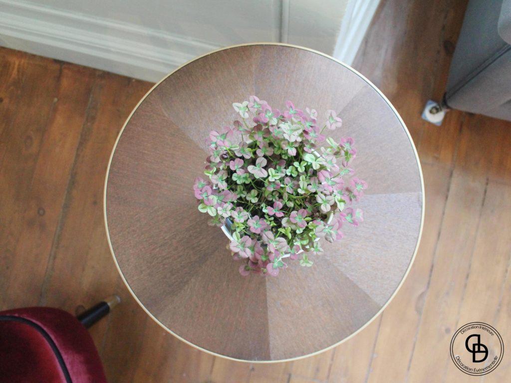 plante verte, table Alinéa