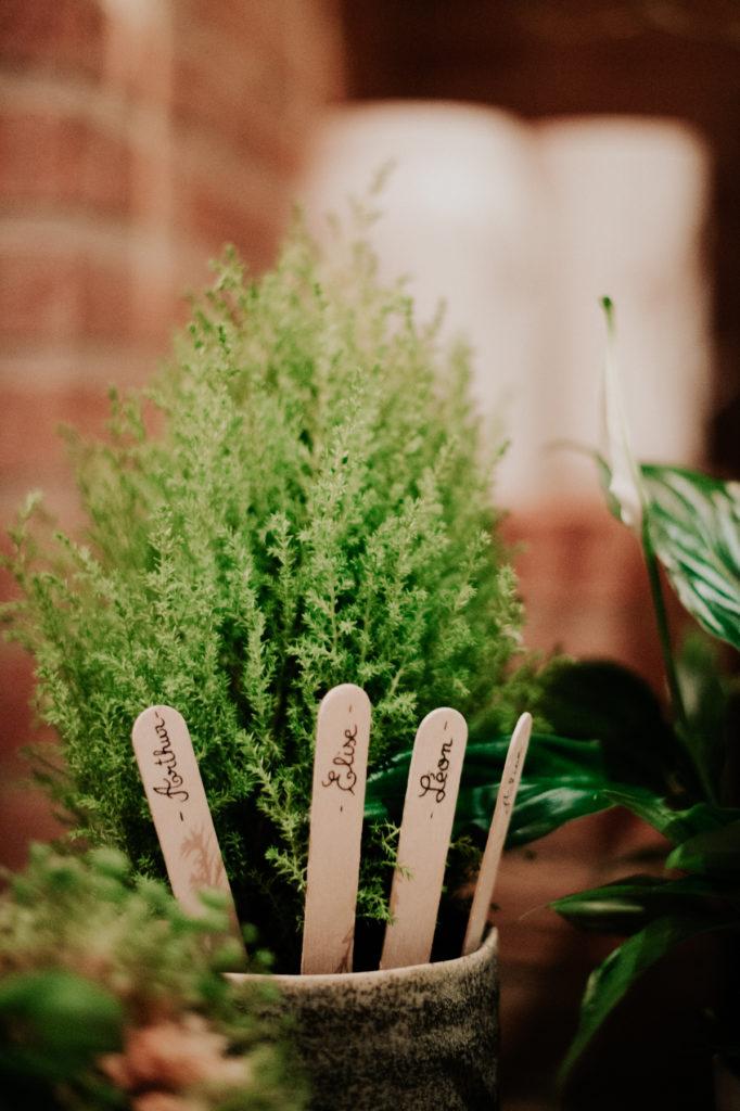 Plante en pot pour plan de table